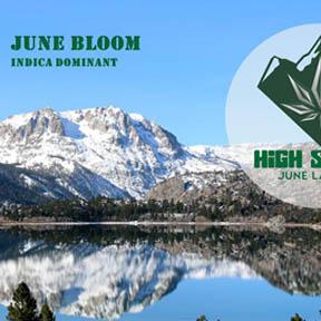 high sierra june lake exclusive